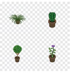 Isometric flower set of peyote plant tree and vector