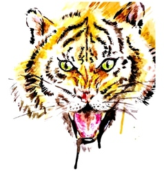 Watercolor tiger vector