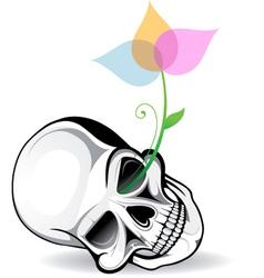 Skull Artistic vector image