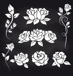 decorative roses on chalkboard vector image