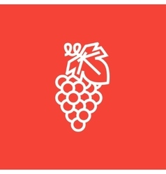 Grape line icon vector