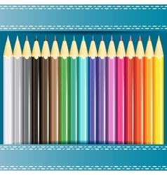 Collection of pencils vector image vector image