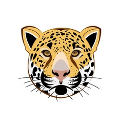 Leopard-380x400 vector