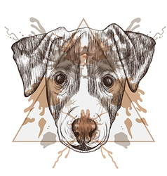 Sketch hipster jack russel terrier face in vector