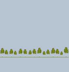 wallpaper tree pine background vector image vector image