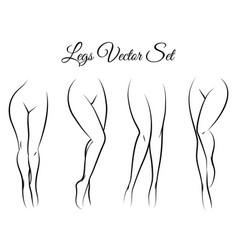 woman legs set vector image vector image