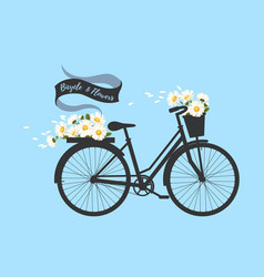 bicycle with camomile vector image