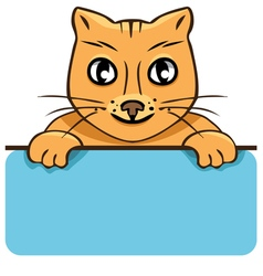 cartoon cat with a poster vector image vector image
