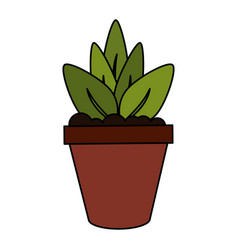Color image cartoon plant in pot decorative vector