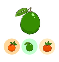 Fruit icons lime  orange mandarin vector
