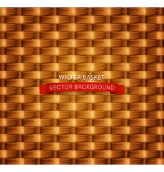 Texture wicker basket vector