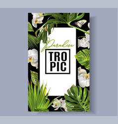 tropic orchid frame vector image vector image