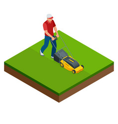 Man mowing the lawn with yellow lawn mower in vector