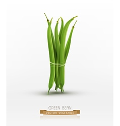Green beans bound sheaf isolated vector