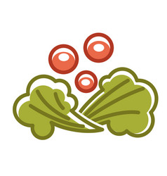 broccoli and berries vector image