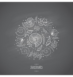 Sea shells in sketch on chalkboard vector image vector image
