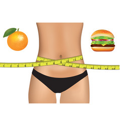 woman belly with measuring tape and food choice vector image