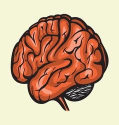 Brain4 resize vector