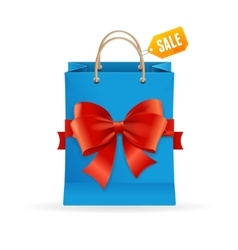 Paper Bag and Ribbon Present Concept vector image vector image