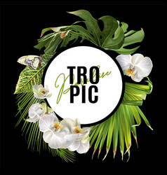 tropic round banner vector image vector image