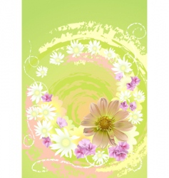 summer daisy flower background vector image