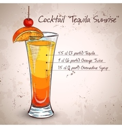 Tequila sunrise realistic cocktail vector