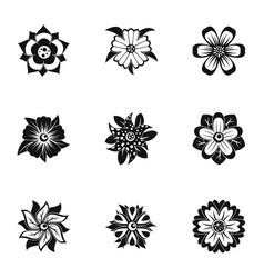 florist decoration icon set simple style vector image