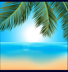 Tropical sunrise with palm trees background vector