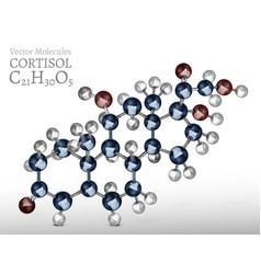 cortisol molecule image vector image