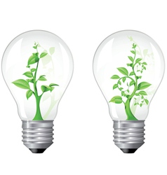 Light bulb with sprout inside vector
