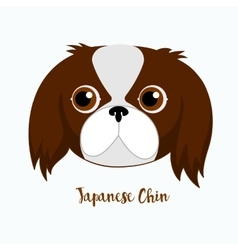Dog japanese chin vector