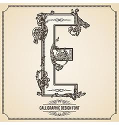 Calligraphic font Letter E vector image