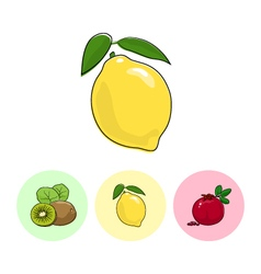 Fruit iconslemon  kiwifruit pomegranate vector