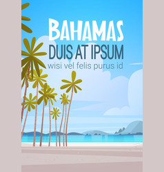 Bahamans sea shore beach beautiful seaside vector