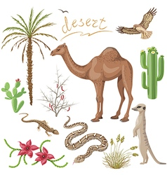 desert set vector image