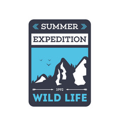 summer expedition vintage isolated badge vector image vector image
