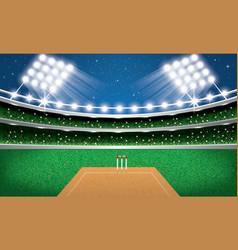 cricket stadium with neon lights arena vector image