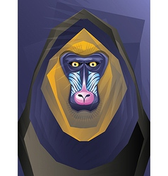 Abstract ape vector