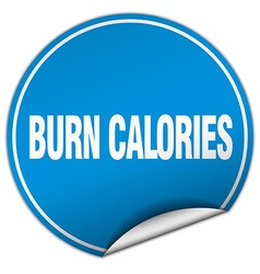 Burn calories round blue sticker isolated on white vector