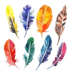 Watercolor hand drawn feather set vector