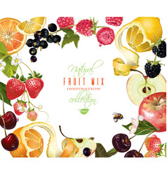 Fruit mix banner vector