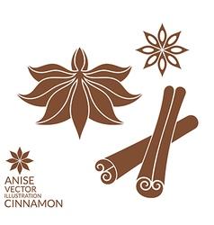 Cinnamon anise isolated on white vector