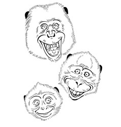 Funky Monkey vector image vector image