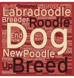 New designer dog breed the roodle text background vector