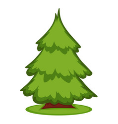 A pine in the forest vector