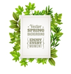 Decorative frame with spring leaves vector