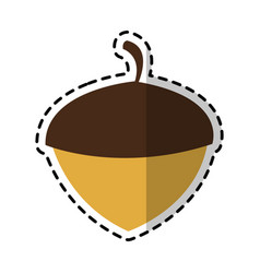 Acorn nut icon image vector