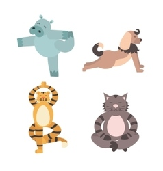 Fun Animals of Yoga Pose vector image vector image