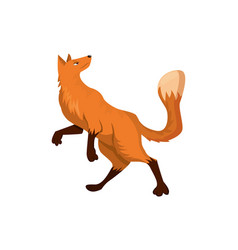 Funny cartoon red fox over white background vector