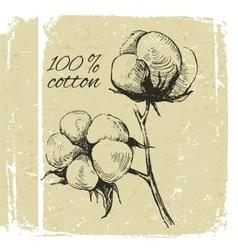Hand drawn cotton brunch vector